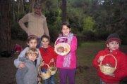 Cueillette de Champignons avec Neos Kids