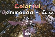 The Golden Forest Hike - Ammouaa Akkar | HighKings