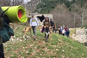 Yogis & Dogs Enjoying Kfardebian Valley With Ziad
