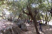 Hiking at Maroun El Ras with DALE Corazon -L.E.  Yaroun