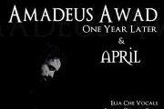 Amadeus Awad Live - One Year Later