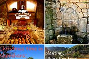Christmas time in Khenshara: Planting, Hiking, Heritage & Winery Lunch with GREEN STEPS