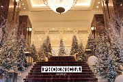Festive Season at Phoenicia Hotel