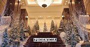 Festive Season at Phoenicia Hotel