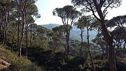 Hiking Haitoura to Roum to Rimat Jezzine with Goldenfeet Leb