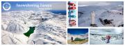Snowshoeing Faraya with Wild Explorers