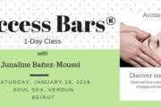 Access Bars® 1-Day Class