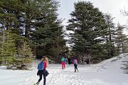 Snowshoeing at Tannourine Cedars with DALE CORAZON