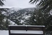"Snowshoeing at ""Shouf Biosphere Reserve"" with The Escape Factory"