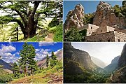 Bcharre - Qadisha Valley - Cedars of God with Zingy Ride