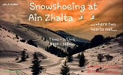 Snowshoeing Experience at Ain Zhalta with GREEN STEPS