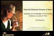 The Wine Knowledge