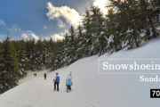Snowshoeing Barouk with Wild Explorers
