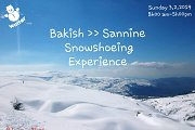 Qanat Bakish to Sannine Snowshoeing Experience with GREEN STEPS