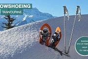 Snowshoeing Tannourine Reserve with Chronosport