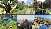 Cedars of God - Baatara Waterfall - Byblos with Zingy Ride