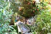 Saturday Garden Brunch at The Blue House Private Tea Salon