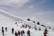 Snowshoeing Cedars Bcharre To Bkaakafra