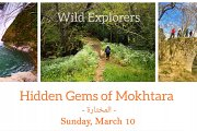 Hidden Gems of Mokhtara with Wild Explorers Lebanon