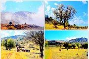 Marj Bchennata Hike with Wild Adventures