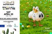 The Lindt Easter Hunt