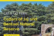 Let's Go Hike In Cedars of Jaj and Bentael Natural Reserve