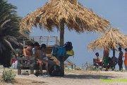 Palm Island with Vamos Todos