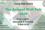 The Animal Well Fair 2019