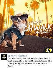 """Is Your Pet Catwalk Material?""  Runway Pet Fashion Show @ Spinneys Hazmieh Pet Festival"