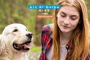 Ain El Delbe Hike