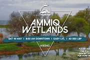 Ammiq Wetlands Hike | HighKings