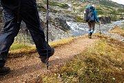 Ain Zhalta - Maasser Forest Hike with Wild Adventures