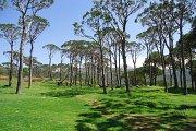 Hiking & Yoga Arsoun with Omkara Lebanon
