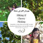 Hiking & Cherry Picking
