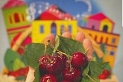 Cherry Festival in Hammana
