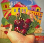 Cherry Festival in Hammana