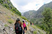 Al-Rahweh Spring Hike with Wild Adventures