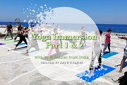 Yoga Immersion Part 1 & 2/ Yoga Master From India