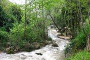 Imar to Rasheen River with WeAreHikers