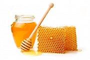 Honey Festival with The Little Explorer