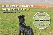 Discover Lebanon with your Pet