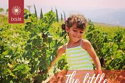 Little Harvesters event at IXSIR's Winery