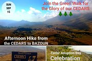 GREEN HIKE FOR THE GLORY OF OUR CEDARS with GREEN STEPS
