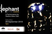 """Elephant in the Dark"": A Blindfold Walk Performance"