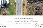 Urban Afforestation, Lebanon's first Miyawaki Forest - With TheOtherDada
