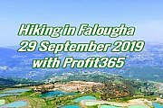 Hiling in Falougha with Profit365
