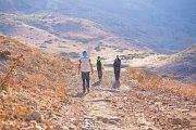 Free Hiking (Baadaran-Chouf) with Holistic Healing