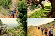 Darb Al-Sindyan Hike with Wild Adventures