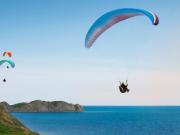 Paragliding Tandem Flight with Purple Pineapple Pot