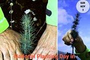 National Planting Day In Maaseer El Shouf